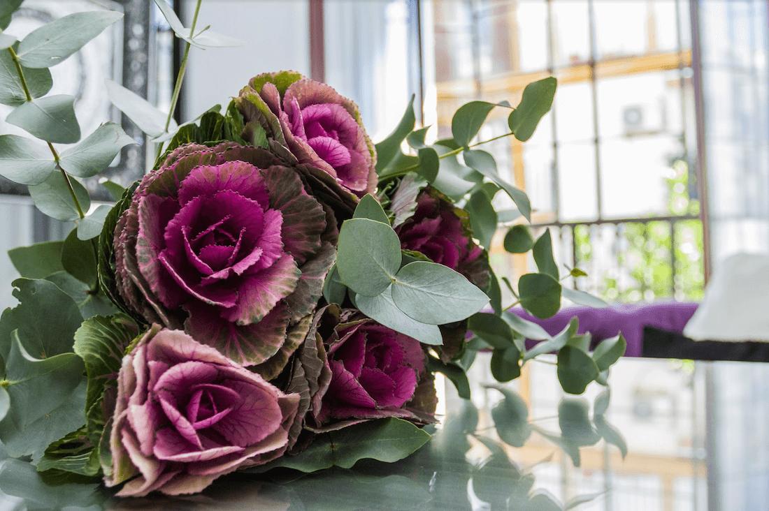 flores-escondite-de-maria-apartamento-1