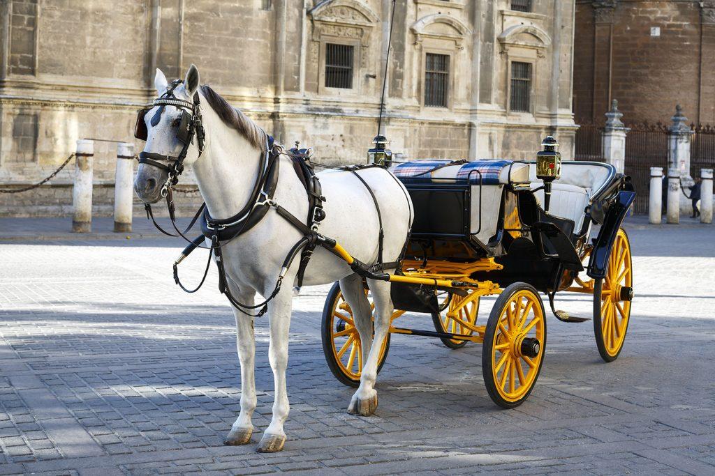 Paseo-en-coche-de-caballos-en-Sevilla-Apartamentos-en-Sevilla